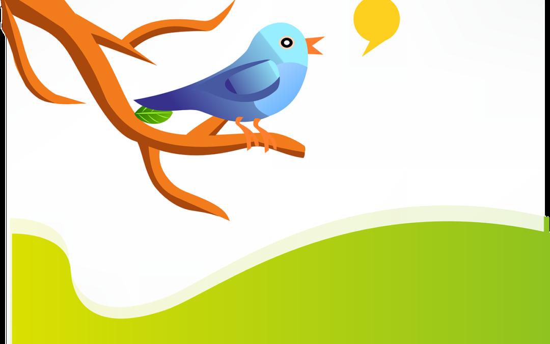 Vill du lära dig mer om Twitter?