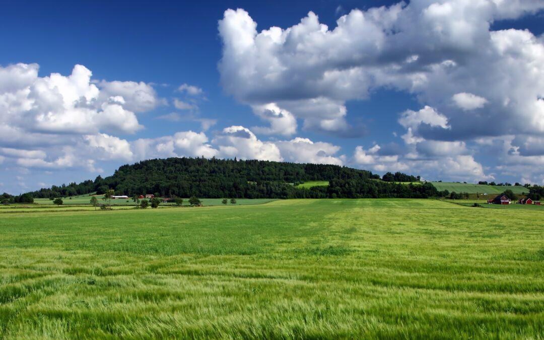 Naturen och öppna landskap