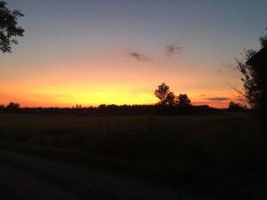 landsbygds dröm